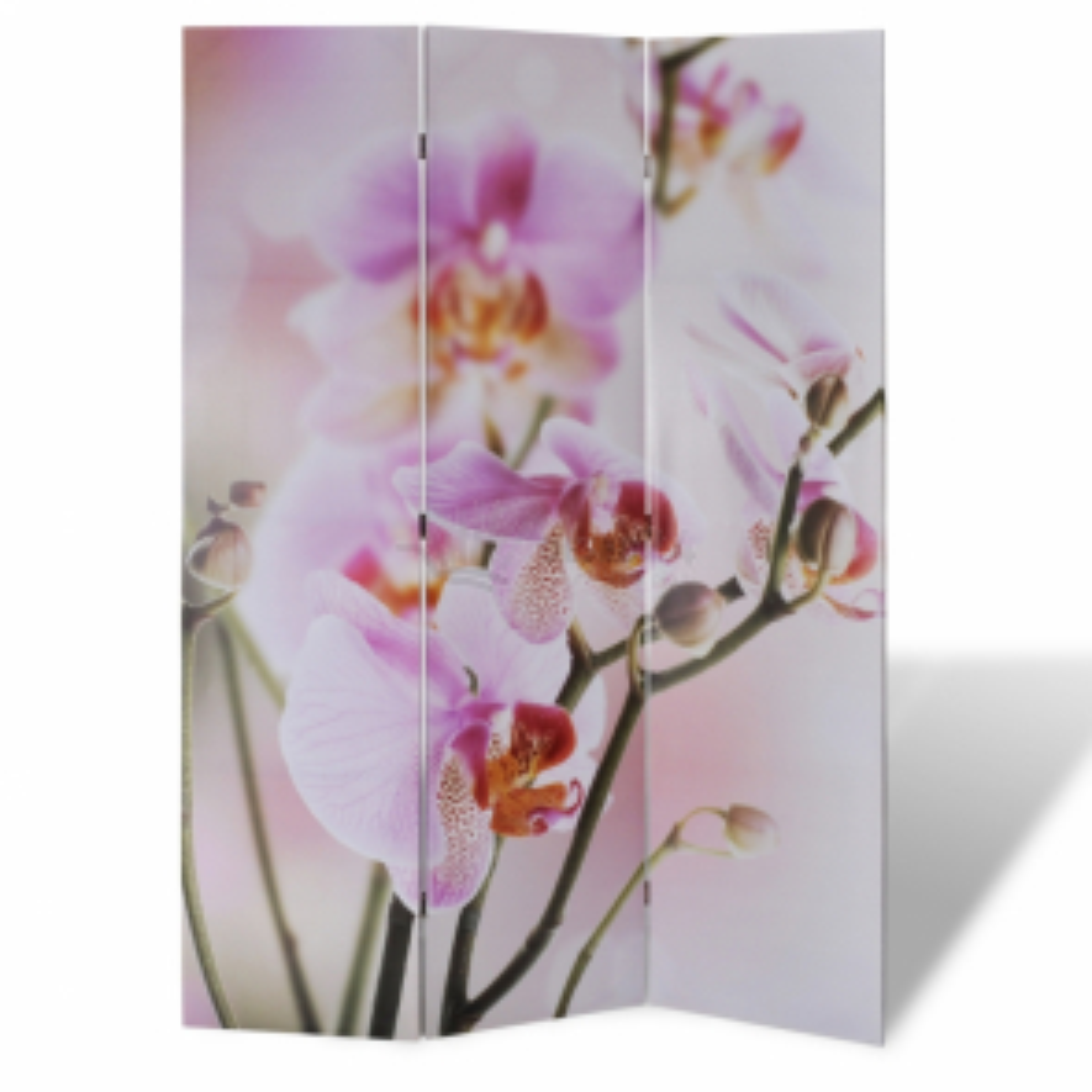 Paraván s květinovým potiskem 120x180cm